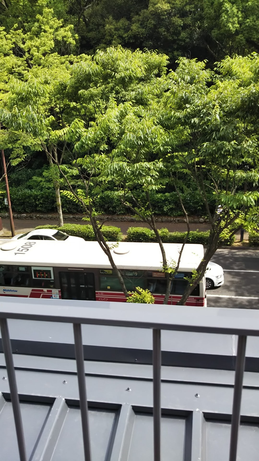 【ビオトープ福岡】2F散策2