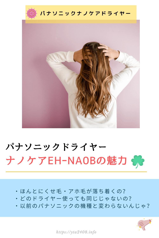 パナソニック・ナノケアドライヤーEH-NA0B